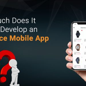 How Much Does It Cost to Develop an E-Commerce Mobile App